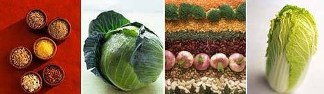 Neke od makrobiotičkih namirnica